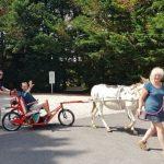 balade découverte des ânes et de l'escargoline 22 escargoline