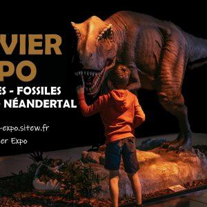 Événements 71 exposition Dinosaures Fossiles et Prehistoire 1