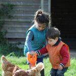 le matin des petit(e)s fermier(e)s 13 matin enfant ferme nort sur erdre